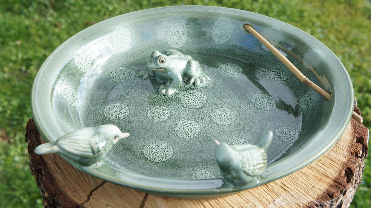 bain d'oiseaux