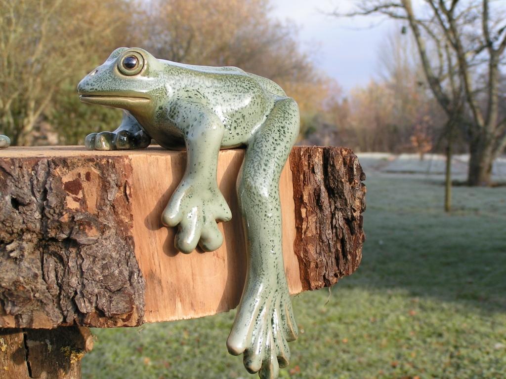 grenouille (15 cm)